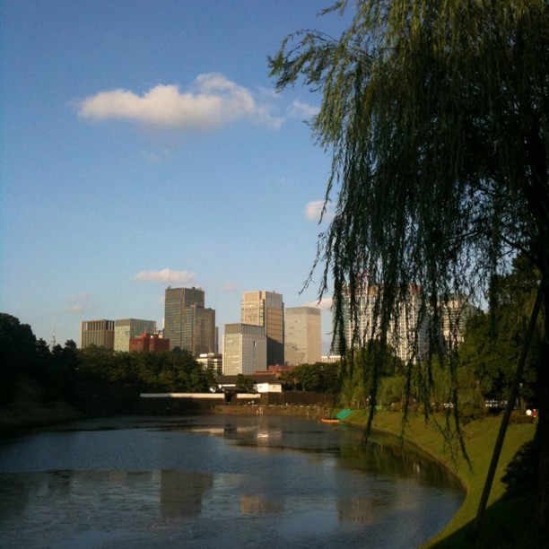 Encore un joli ciel bleu sur Tokyo aujourd'hui ! Ça c'était hier ;-)