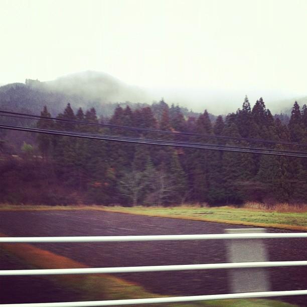 Brume dans la montagne nipponne… Aujourd'hui on n'est pas gâté par la météo…