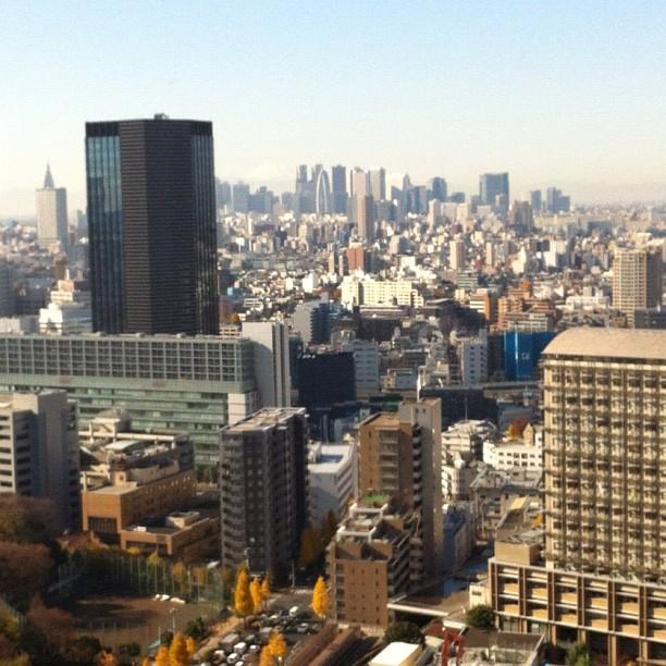 En plein repérage de nouveaux spots photo pour les Tokyo Safari