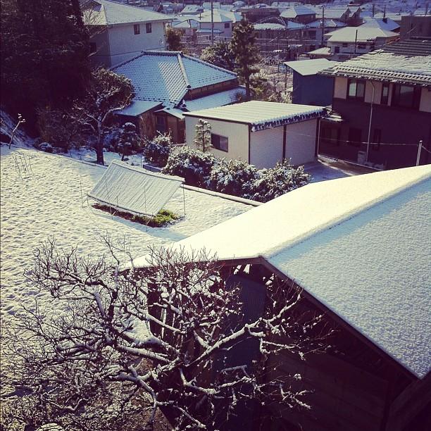 Dommage la ville ne restera pas longtemps couverte de neige…