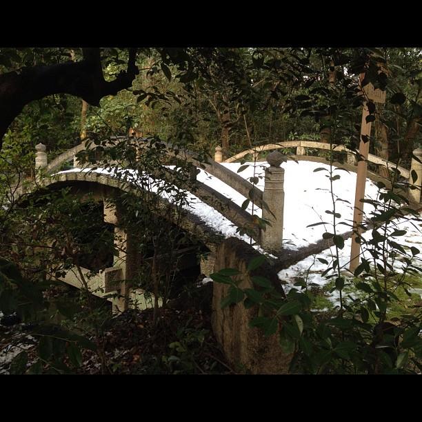 Pont recouvert de neige