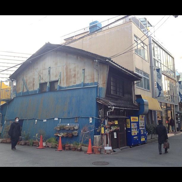 À chaque fois que je passe devant cette vieille maison qui fait de la résistance dans une zone rénovée, je prie pour qu'on ne la détruise pas