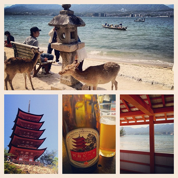 Balade presque estivale sur l'île de Miyajima. Bière locale en bonus :)
