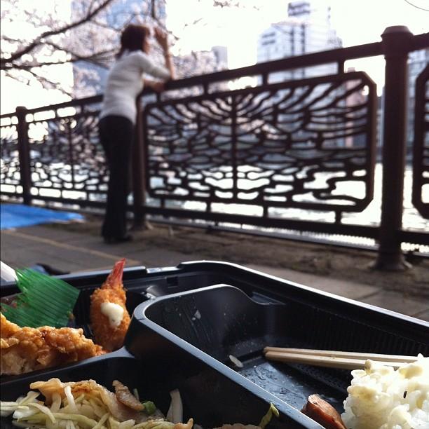 Ohanami du midi pour le Tokyo Safari… Mon spot est top ;)