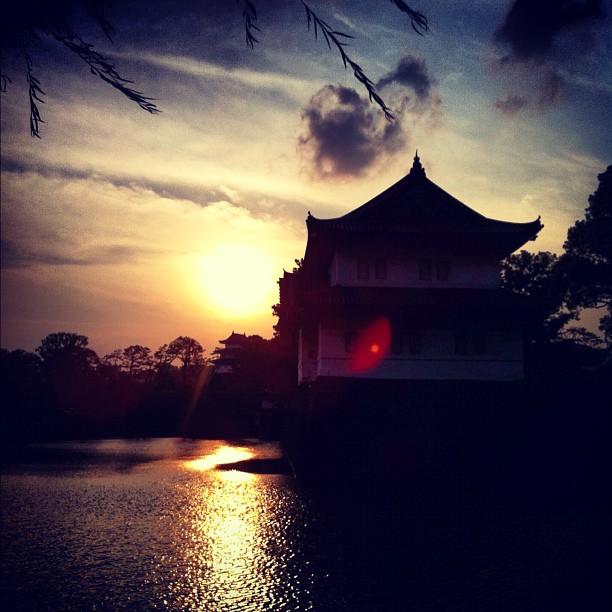 Ombre chinoise en plein Tokyo