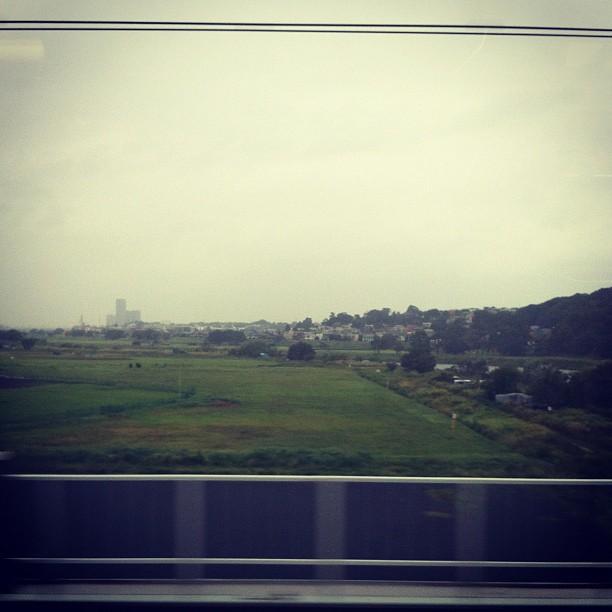 On est passé d'un ciel bleu à gris… Mais on dirait vraiment pas qu'un typhon approche… Quasiment pas de vent…