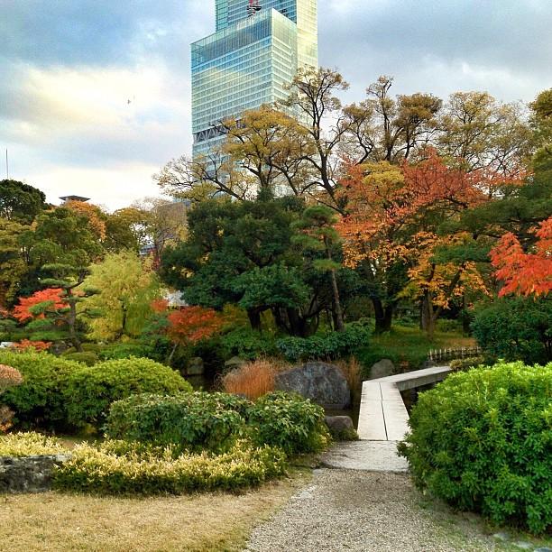 Jardin d'automne à Osaka