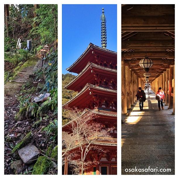 Journée dans les temples de la région d'Asuka