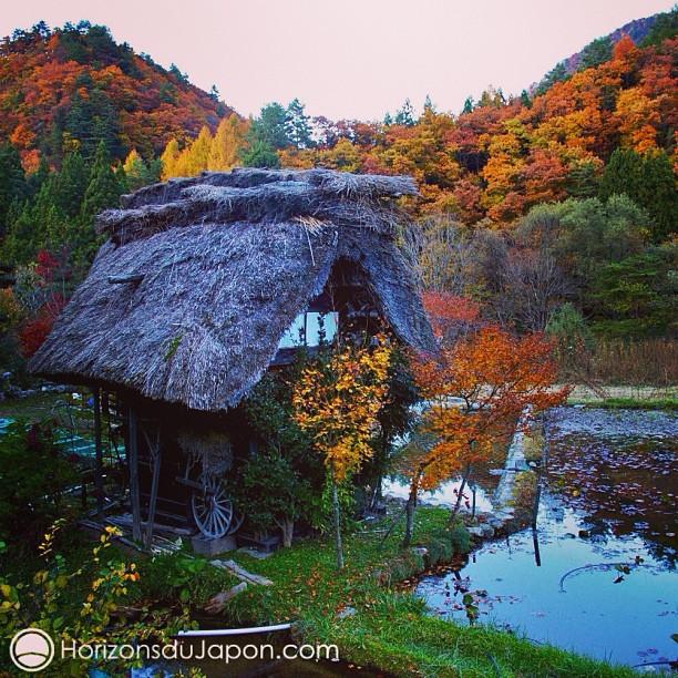 Une magnifique cabane au toit de chaume