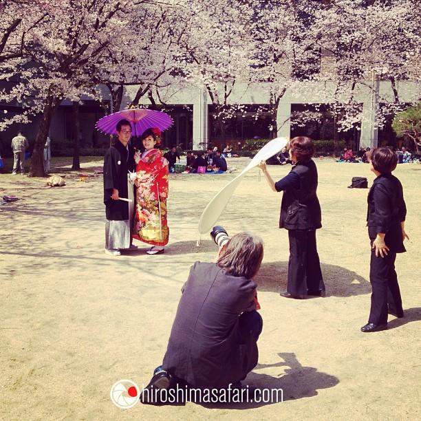 Séance photo de jeunes mariés sous les sakura d'Hiroshima.