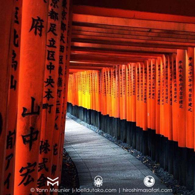 Un classique de Kyoto : la visite du Fushimi Inari avec ses kilomètres de torii vermillons.