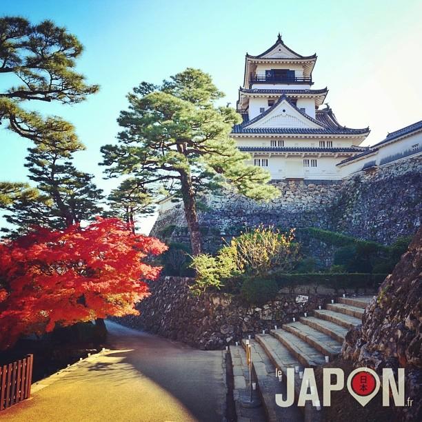 Joli château de la ville de Kochi (Shikoku), qui un des rare à être originel !