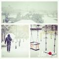 Aujourd'hui ça sera mon 1er Tokyo Safari sous la neige !