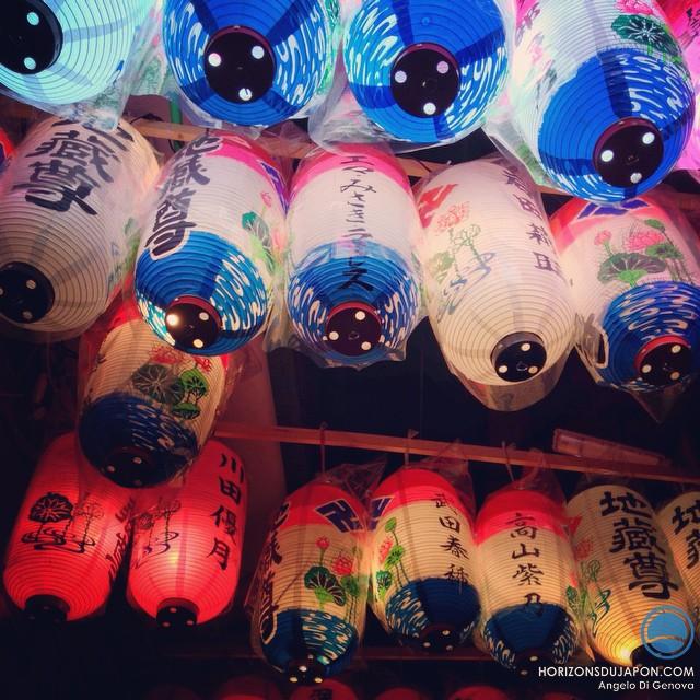 Safari nocturne sous les lanternes d'Osaka
