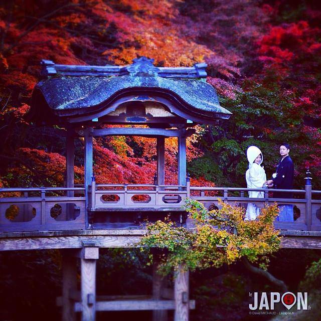 L'automne à Yokohama : la ville des photos de mariages, à 25 minutes de Tokyo ! #YokohamaSafari