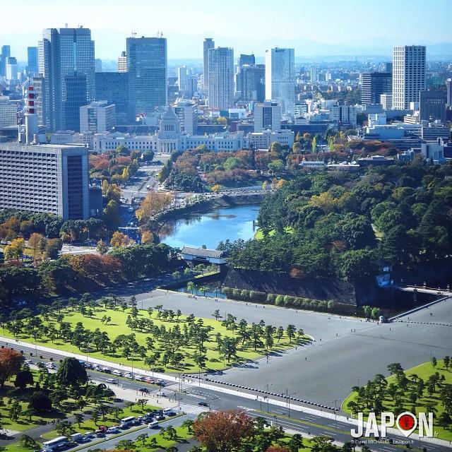 Nouveau spot photo pour voir l'entrée du Palais Impérial ! #TokyoSafari