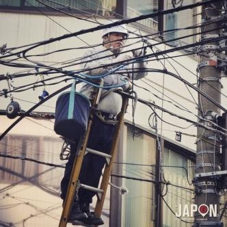Ne cherchez plus c'est lui le coupable ! #beautedescables #Japon