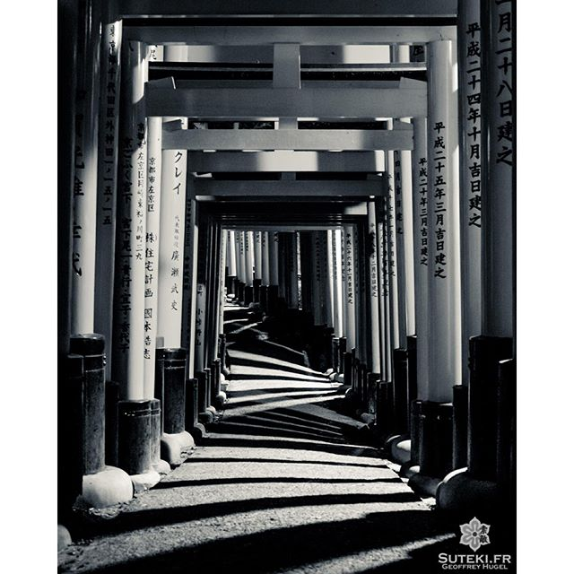 Fushimi-inari en ombres et lumières #japon #kyoto