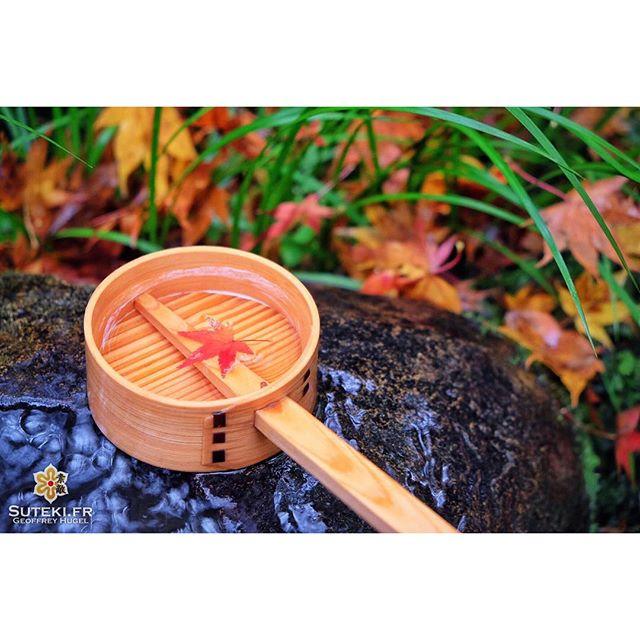 Vous reprendrez bien une petite louche de momiji ? #japon #kyoto