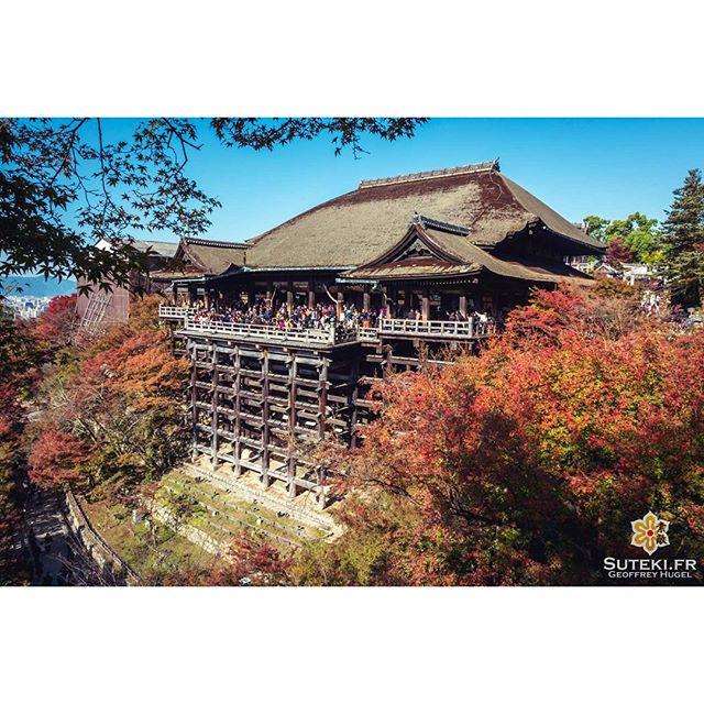 Ultra touristique mais définitivement un must à Kyoto, surtout en automne #japon #kyoto