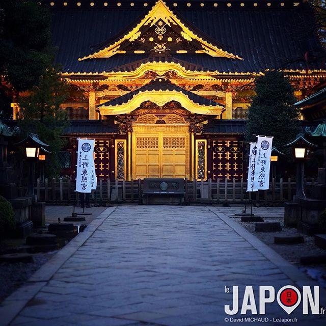 Ueno et son temple d'or ! Euh… pardon… Ueno et son sanctuaire Toshogu ;) #TokyoSafari #Tokyo