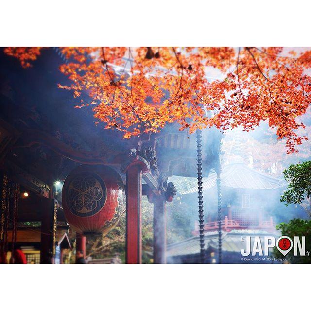 Exploration d'un Japon mystique dont personne n'a jamais parlé… enfin… Personne d'autre que les japonais ;)
