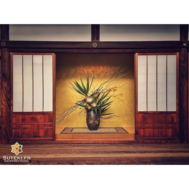 Beauté et simplicité #japon #kyoto