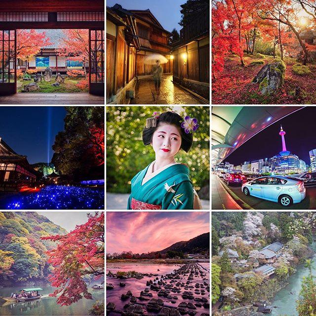 2015 s'achève et fut une année vraiment riche ! On se donne rendez-vous bientôt ! Bonne année à tous ! #japon #kyotosafari