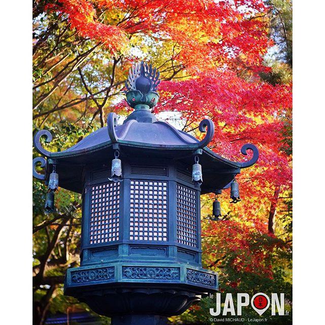 Dédicace à l'ami @loeildutako pour sa collection de lampadaires ! Ici à #Kyoto ;)