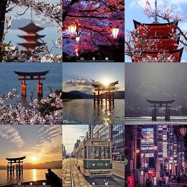 En attendant la nouvelle année, voici les 9 photos que vous avez le plus aimé. Le #torii de #Miyajima revient souvent 😬 Un grand merci à tous 🐙🐙🐙🐙🐙
