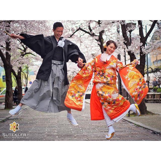 Yatta, c'est le printemps et les sakuras sont là !!! #japon #kyoto #kyotosafari