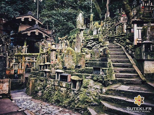 Fushimi de l'envers #japon #kyoto