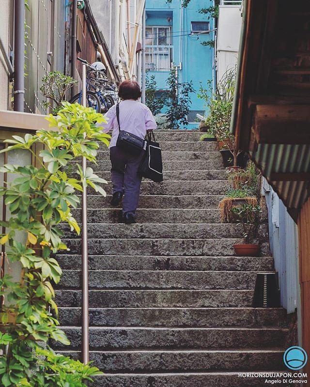 Pendant un Osaka Safari on découvre plein de Japon différents, surtout ceux qu'on n'imagine même pas en plein cœur de la métropole d'Osaka.