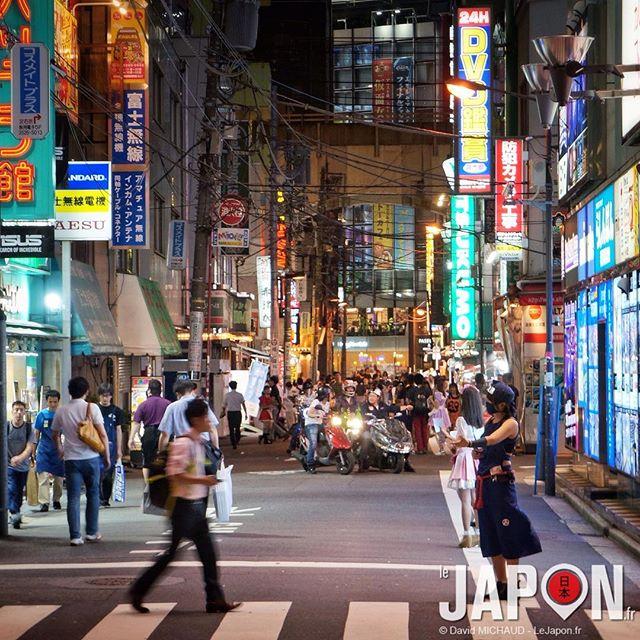 Vous ne rêvez pas ! Il y a bien des Ninja dans les rues de Tokyo ! #Tokyo #TokyoSafari #Japan
