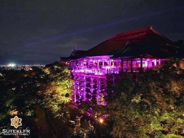Le Kiyomizu-dera en rose pour la bonne cause #japon #kyoto #kyotosafari