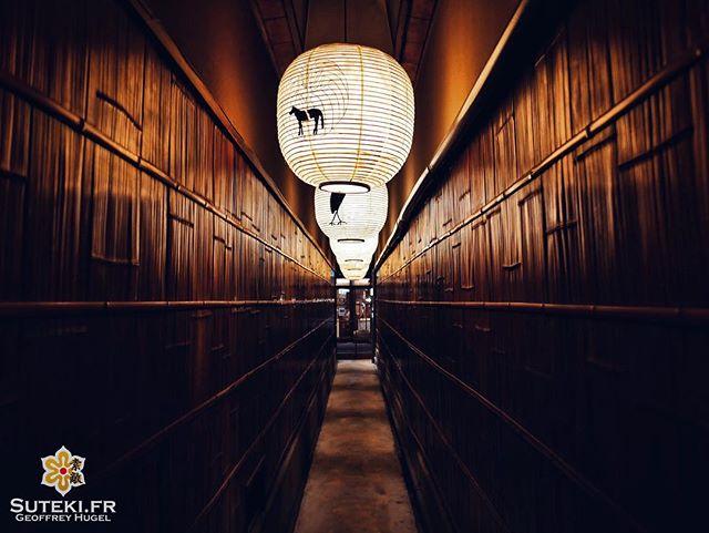 À la lueur des lanternes #japon #kyoto #kyotosafari