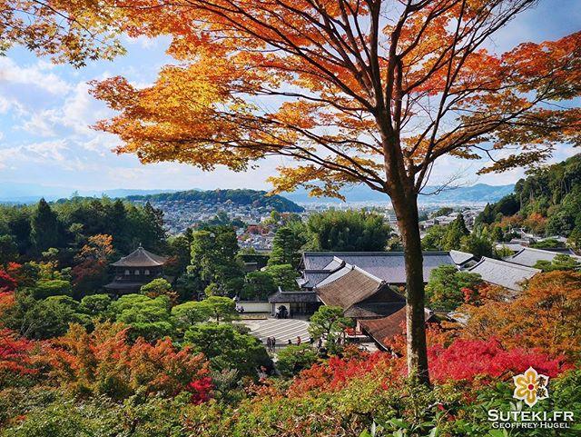Automne d'Argent #japon #kyoto