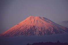 Bonne Nuit Monsieur Fuji
