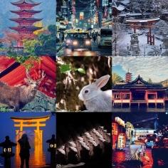 #2016bestnine Le torii de #miyajima et des #chat . L'honneur est sauf 😬. Que La force soit avec vous en 2017 et menez à bien vos projets ! Bonne année ! 🐙🐔