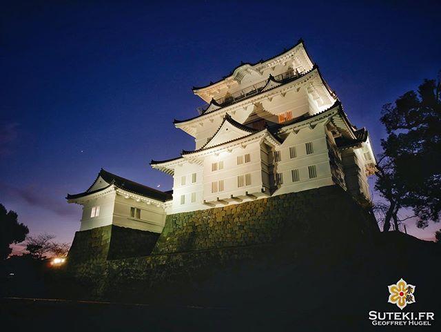 Un joli château à la tombée de la nuit @lejapon @loeildutako @horizonsdujapon @tanukitsuneko @hoxiong