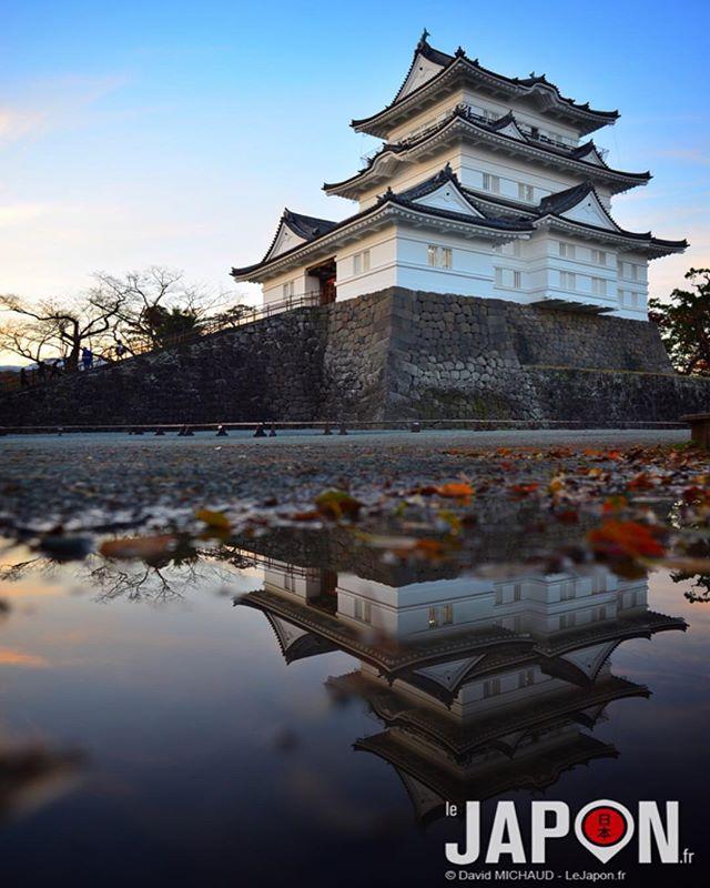 Château d'Odawara pour un Safari Team bonenkai avec @tanukitsuneko @horizonsdujapon @geoffsuteki @loeildutako @manikenoke 👍😄