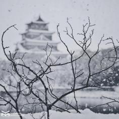 Le château d'Hiroshima hiver 2017.