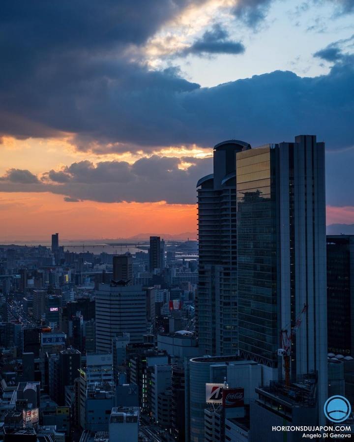 Le fin du jour c'est souvent un spectacle #osakasafari #japonsafari #fujifilmxt1