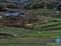 La belle campagne japonaise d'Awaji