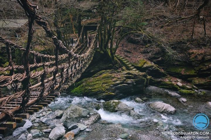 La vallée d'Iya et ses ponts de lianes