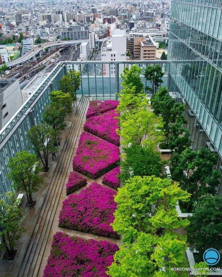 Les secrets d'Osaka sont bien gardés. Vous permettre de les apprivoiser c'est ma priorité :) #osakasafari