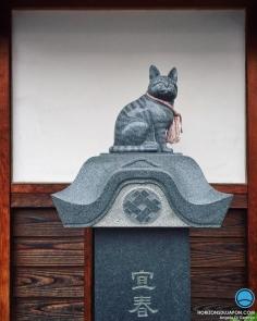 Un chat immortalisé. Pour quelle raison ? Était-il souvent là ? Était-ce le chat du propriétaire ? Ou est-ce simplement une décoration kawaii pour attirer le regard des passants ayant un compte Instagram ? ^^