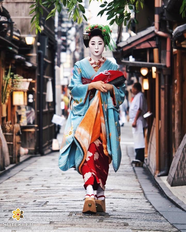 Grâce et légèreté dans le monde des fleurs et des sauges #japon #kyoto