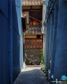 Il y a toujours quelque chose d'intéressant au bout du chemin  #osaka #osakasafari #japonsafari