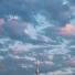 Un petit yakitori pour la route ? #Tokyo #tokyosafari #omoideyokocho #Japon #Japan